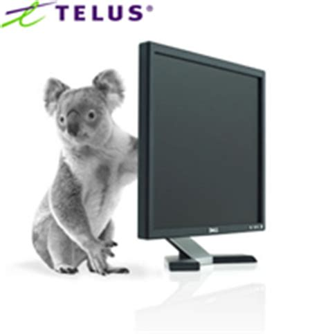 telus new year promotion free dell 19 lcd monitor with telus offer canadian