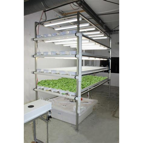 Hydrohobby For All Your Hydroponics Gear by Hydrocycle Vertical Nft Lettuce Herb System 6 Quot Pro 10