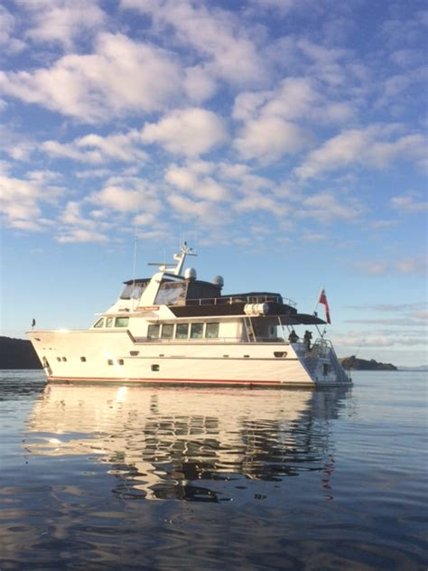 boat supplies auckland great southern luxury charter boat auckland marine