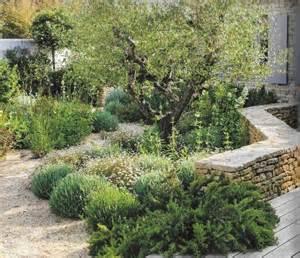 d 233 co massif jardin zen aulnay sous bois 13 aulnay