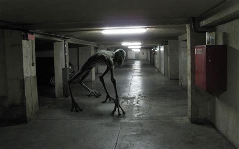 imagenes reales espeluznantes criatura espeluznante im 225 genes de miedo y fotos de terror