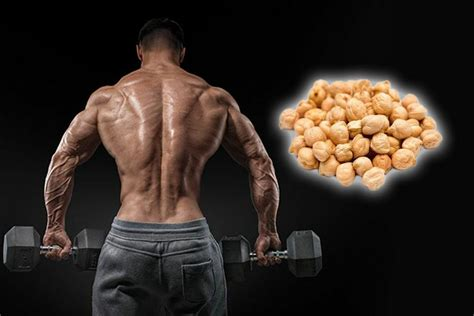 protein in chickpeas eat chickpeas high in protein and calories for your health