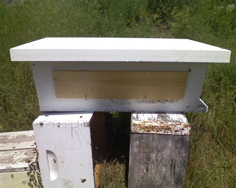 Golden Top Bar Hive by Top Bar Hive Update Dirk Howarddirk Howard