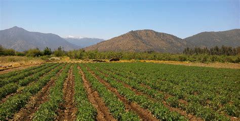 imagenes satelitales para agricultura biotecnolog 237 a aplicada a la agricultura