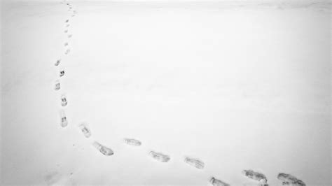 NCPD Nabs 2 Men For Burglary by Following Snowy Footprints