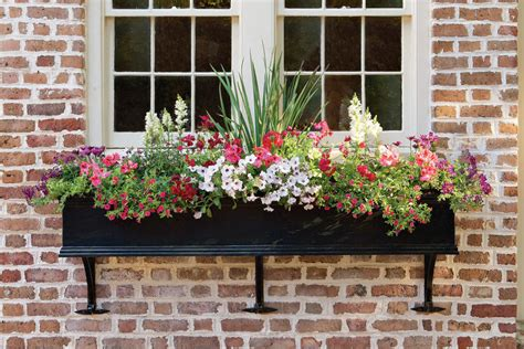 north window plants follow the magic formula add charm with window boxes