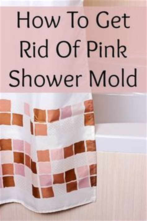 How To Get Rid Of Mould In Bathroom Walls by 1000 Images About Clean It Bathroom On