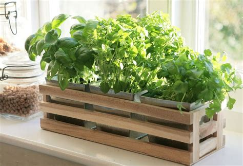 herb planter box kitchen herb window planter box wooden trough metal