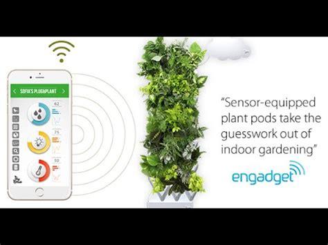 the smart garden plug plant smart wall garden now available youtube
