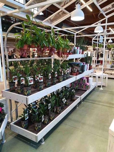 piante arredamento arredamenti per piante e fiori prodotti per vivai serre