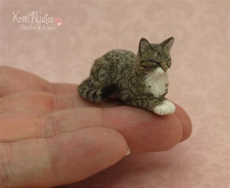 Where Can I Buy A Tiny House realistic sleeping tabby cat sculpture by pajutee on