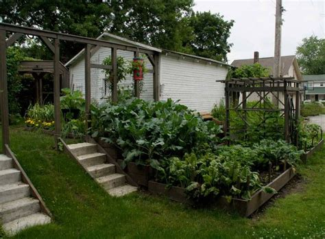 Terrace Vegetable Garden Terraced Garden Home