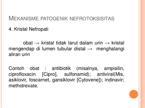 Obat Methotrexate ppt toksikologi nefrotoksik