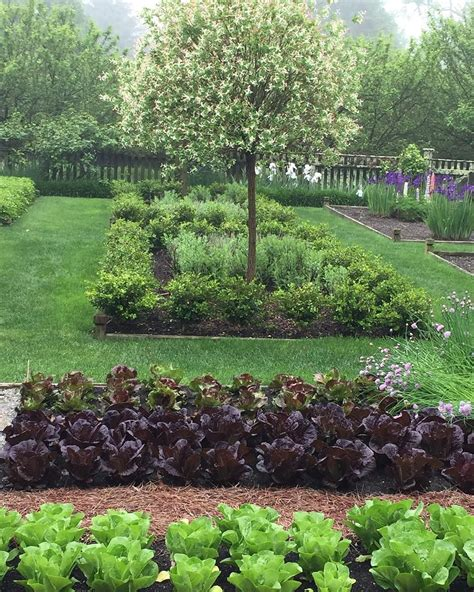 ina garten garden ina garten s backyard looks insanely beautiful garden