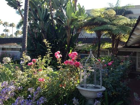 Flower Garden San Diego Flower Garden Patch Picture Of Town And Country San Diego San Diego Tripadvisor
