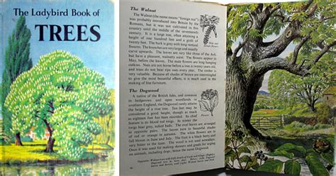 march house books ladybird books series 536 nature