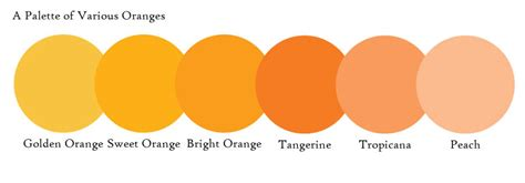 different shades of orange names of different shades of orange my web value