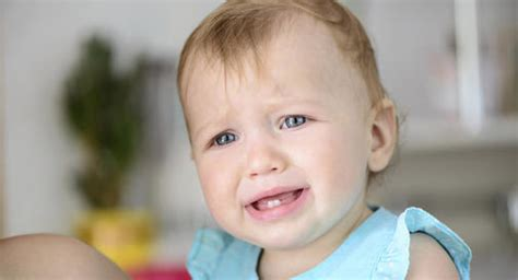 how do i if my has a fever fever in toddlers babycenter