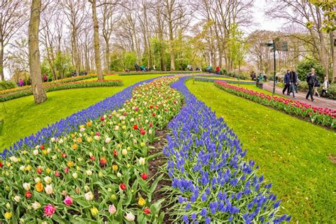 giardini piu belli d italia i giardini fioriti pi 249 belli d italia e d europa easyviaggio