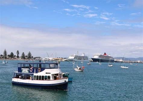 boat cruise prices kiwi strippers boat cruise prices and booking information