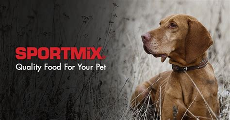 sportmix wholesomes food food for dogs and puppies sportmix 174