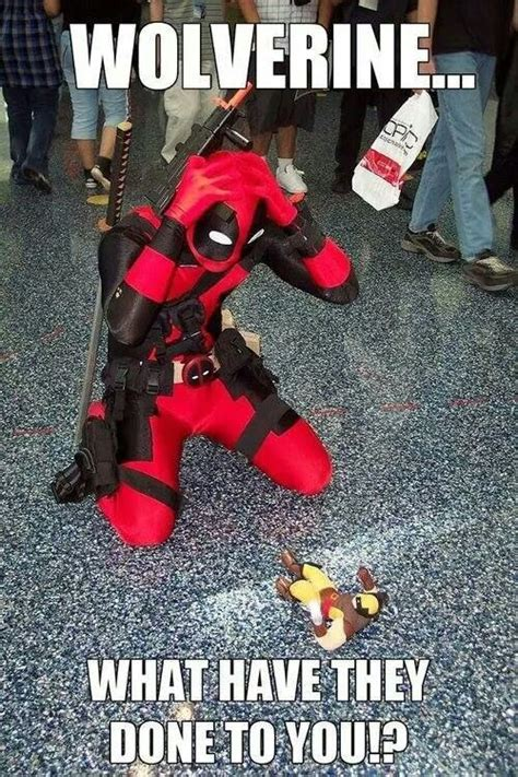 Deadpool Funny Memes - 16 super funny memes of deadpool and wolverine that will