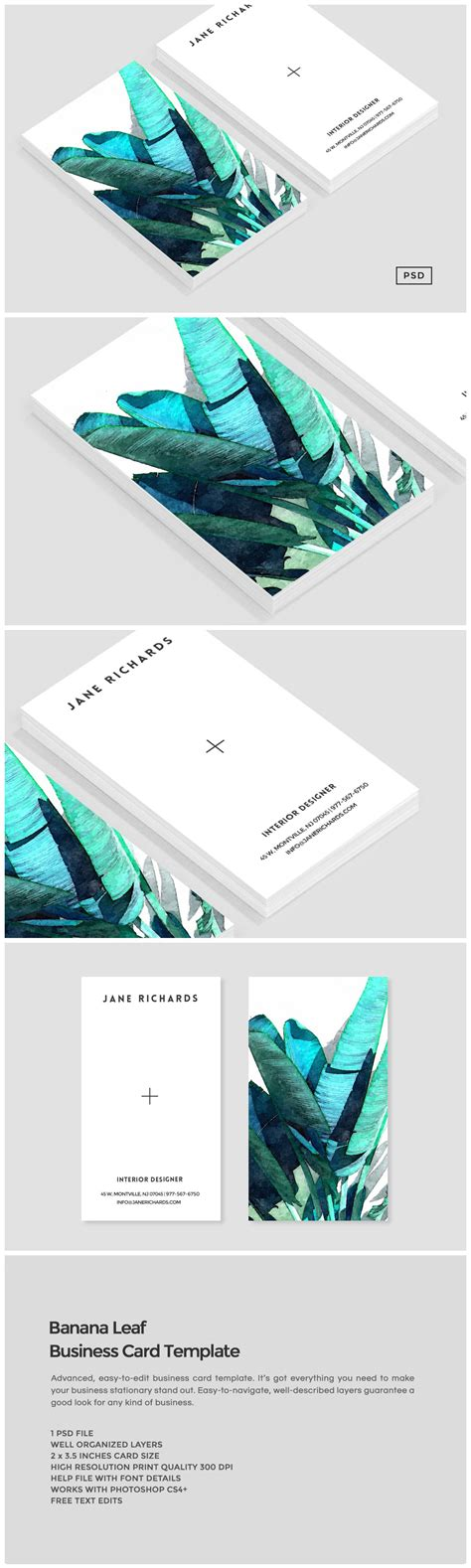 Banana Leaf Business Card Template Business Card Templates On Creative Market Leaf Business Card Template