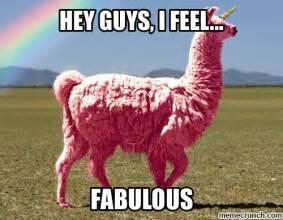 Fabulous Meme - fabulous llama