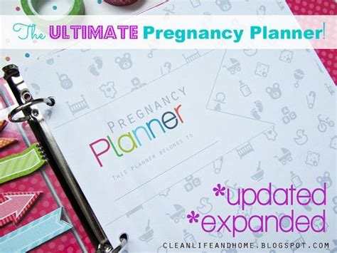 printable pregnancy journal pages pregnancy planner pregnancy and planners on pinterest