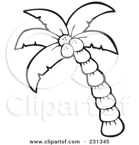 4 best images of printable coconut outline coconut tree