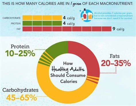 carbohydrates calculator this carbohydrate protein and calculator can be used