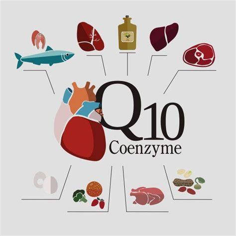 coenzima q10 dove si trova negli alimenti coenzima q10 propriet 224 a cosa serve quando integrarlo e