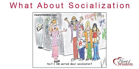 socialize like a homeschooler a humorous handbook for homeschoolers books homeschool what about socialization of wisdom