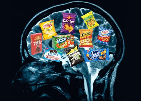 diet for the mind the science on what to eat to prevent alzheimer s and cognitive decline books how the food you eat affects your brain healthy holistic