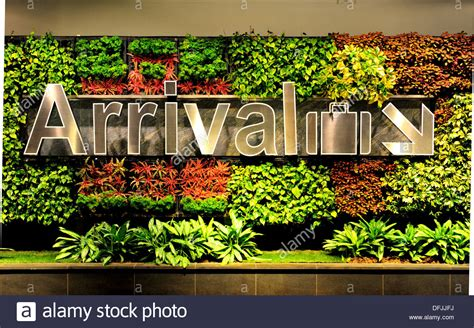 Singapore Vertical Garden Singapore Changi International Airport Vertical Garden