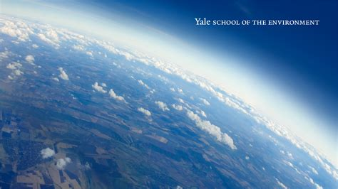 brand identity guidelines  resources yale school   environment