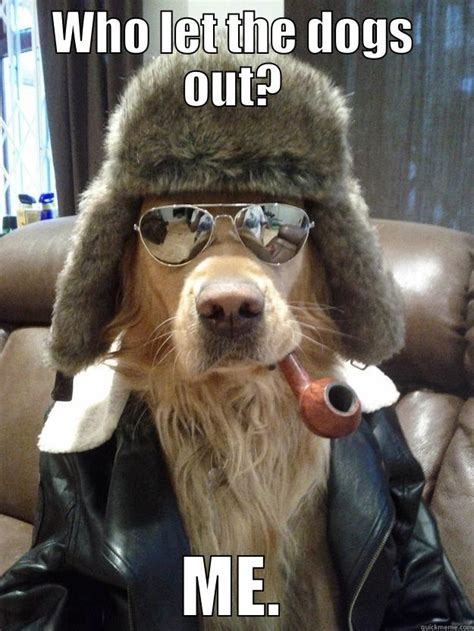 Who Let The Dogs Out Meme - overly suave dog memes quickmeme
