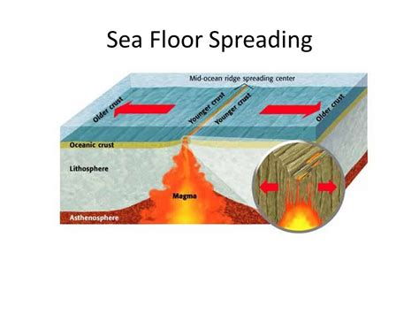 What Does Sea Floor Spreading by Plate Tectonics Ppt