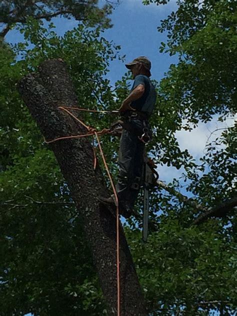 ellis tree service home facebook
