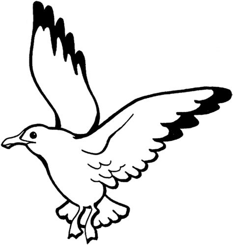drawings of a sea bird clipart best seagulls coloring pages super coloring clipart best