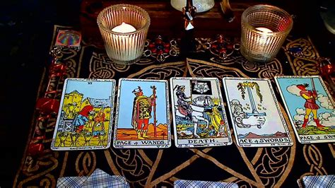 fortune stellar what every professional tarot reader needs to books tarot card reading my daily 5 card spread for 02 04 14 by