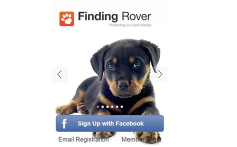 pet technologies news news app pet technologies this app can help you find your lost pet news news