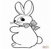 Disegno Di Coniglietto Pasqua Da Colorare  Disegni