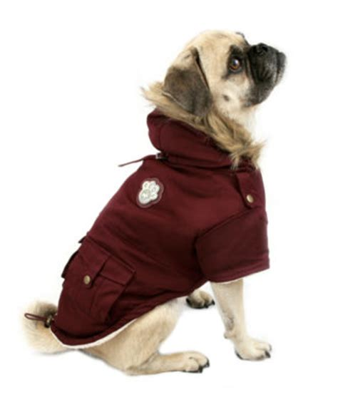 pug winter coat winter coats for the pug pug squad