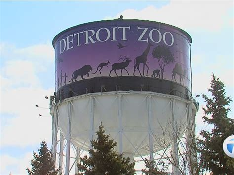 Wlns Giveaway - construction begins on detroit zoo s wolf habitat newsboard