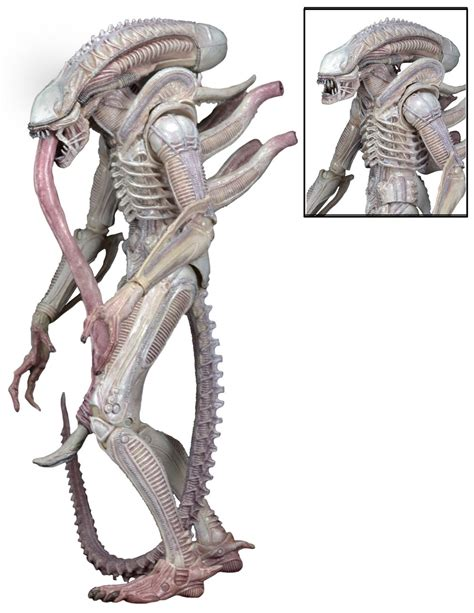 Marine Home Decor by Discontinued Aliens 7 Scale Action Figures Series 9