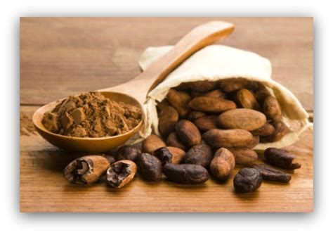 cocoa tea good life free mp3 download how to recognise good chocolate and why you should care