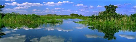 Combination Of Blue by Everglades National Park Everglades Tours From Miami