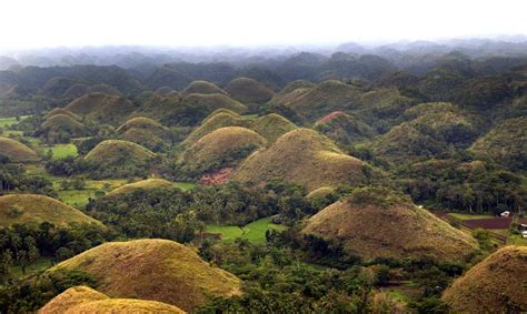 Pick Color by The Chocolate Hills In Bohol Philippines Info Bohol