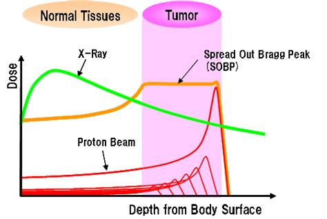 proton bragg peak how does radiation or proton therapy get rid of cancer